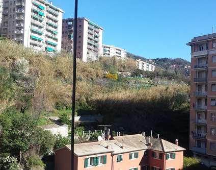 Appartamento Vendita Genova Via Feregiano 97 Marassi
