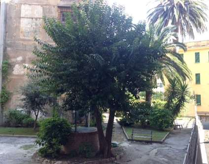 Appartamento Vendita Genova Via Casata Centuriona 6 Marassi