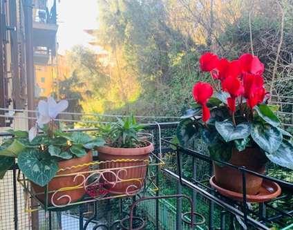 Appartamento Vendita Genova Via Fereggiano 10 Marassi